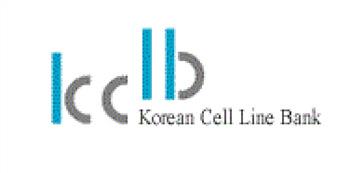 韩国KCLB细胞库