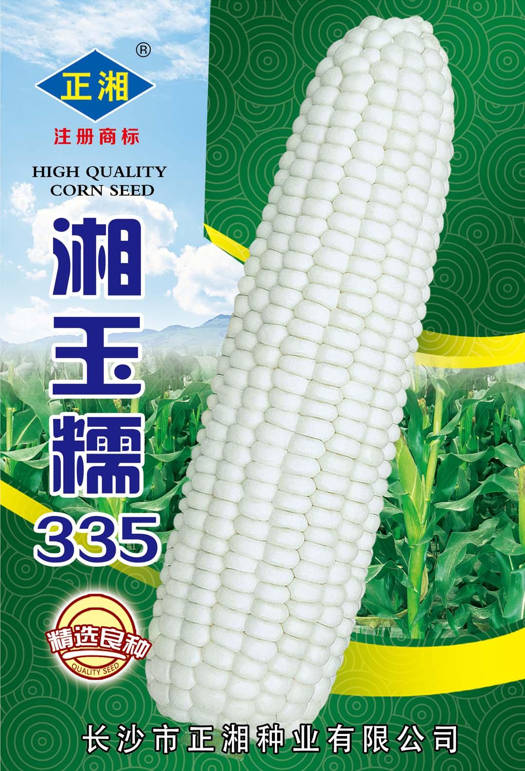 湘玉糯335