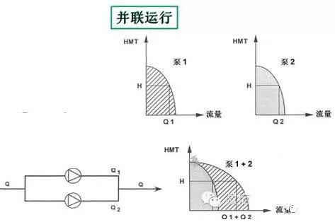 6403 (1).jpg