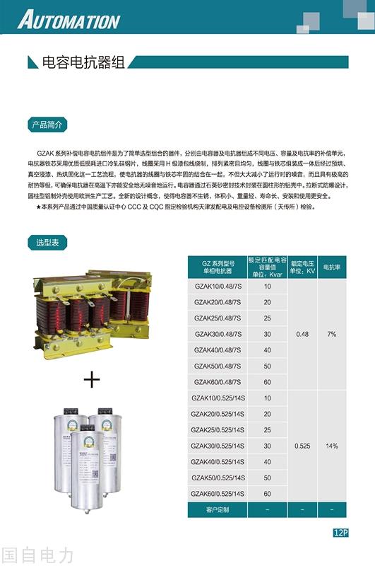 页面提取自-国自电力选型样本6.0版.jpg