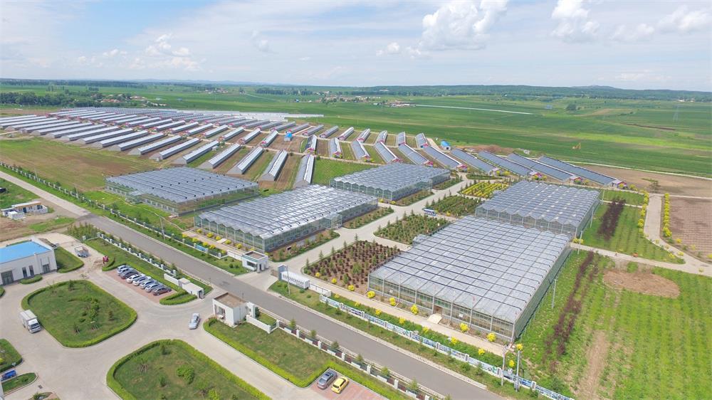 长春国信现代农业科技发展股份有限公司