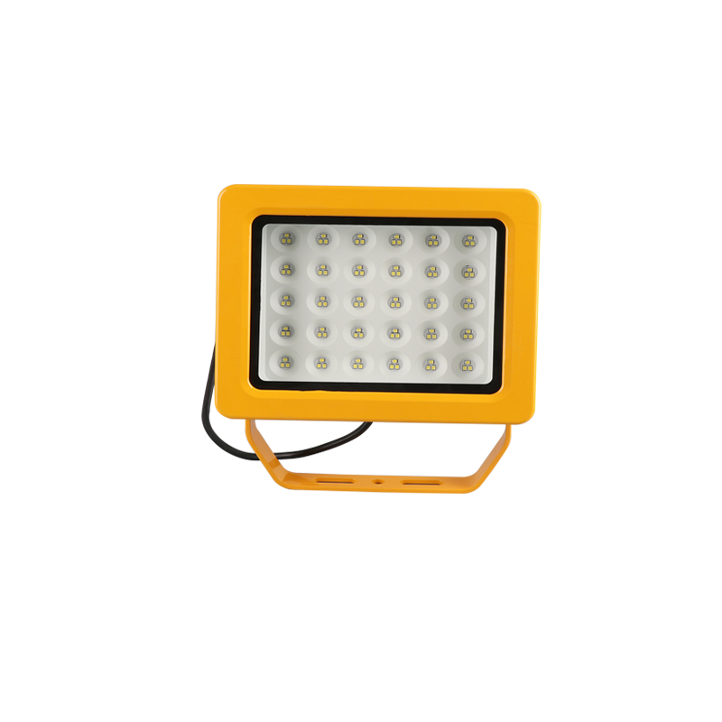 EKS97-40W免維護LED防爆投光燈-壁掛式