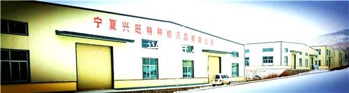 大规模的生产基地