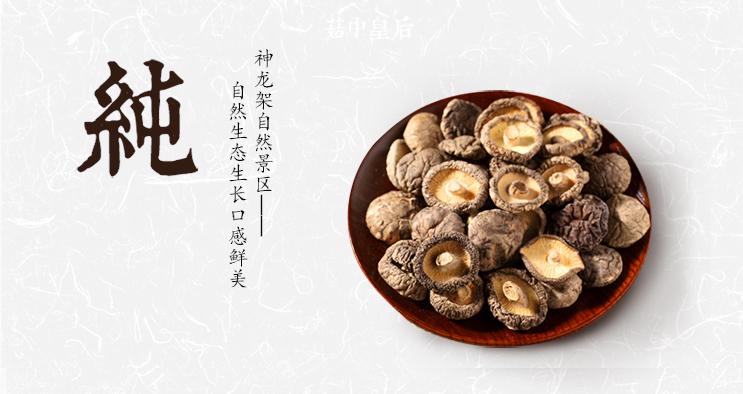 香菇_05_01.jpg