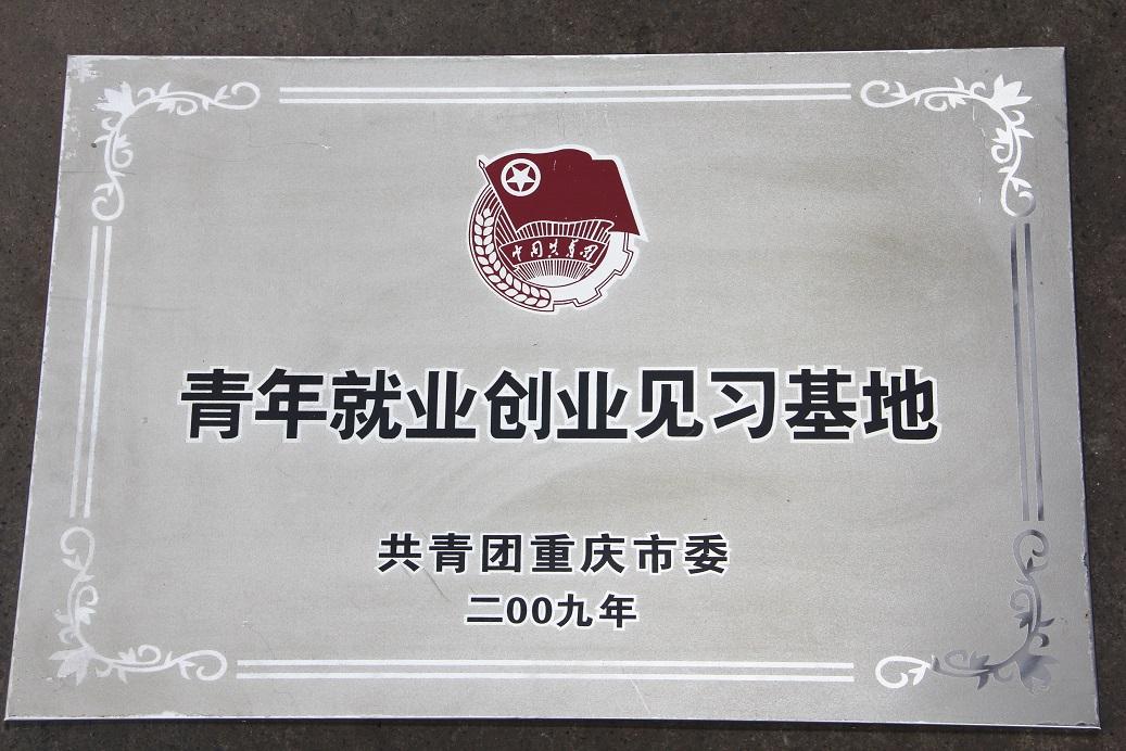 共青团重庆市委青年就业创业见习基地