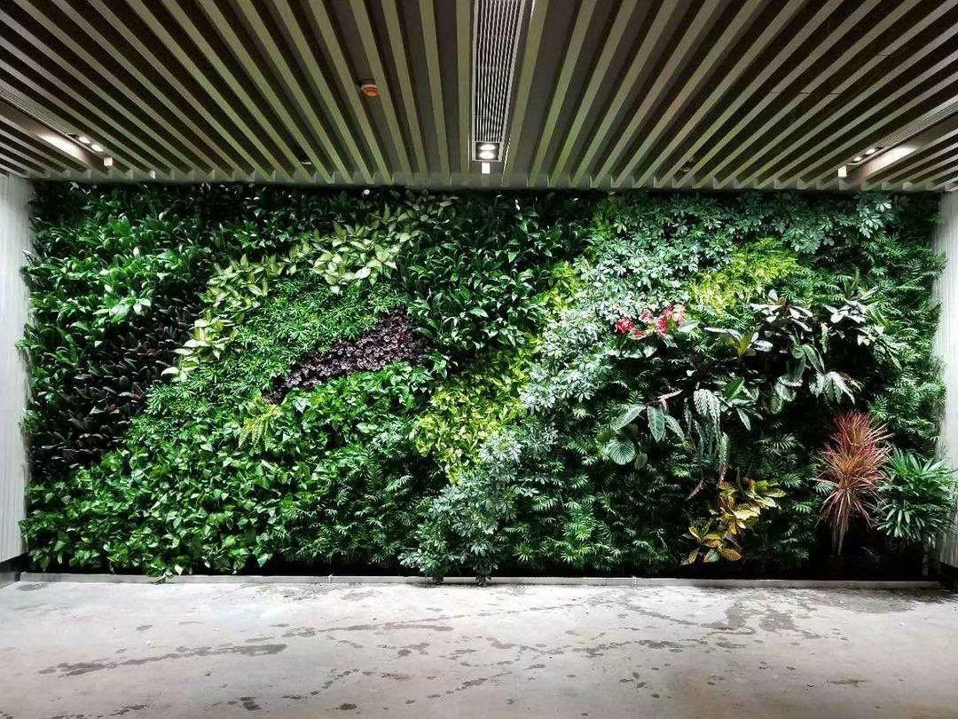 广西柳州植物墙,柳州仿真植物墙,柳州五色绿雕