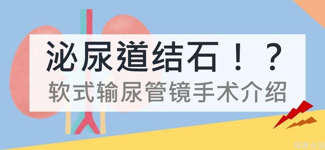 【臺灣長庚醫院】泌尿道結石治療中心-軟式輸尿管鏡手術介紹